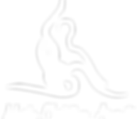 Logo-Marie blanc.png