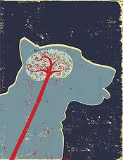 dog-brain-profile-small.jpg