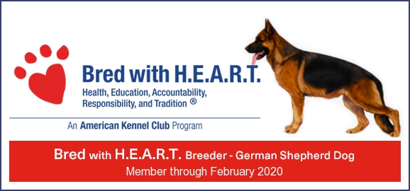 2018_GSD_BWH_banner.png