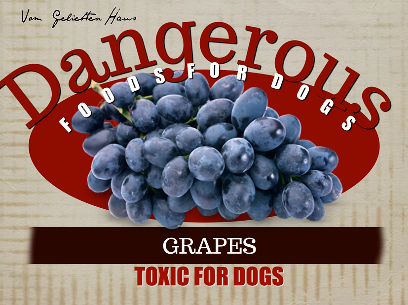 grapes 2.png