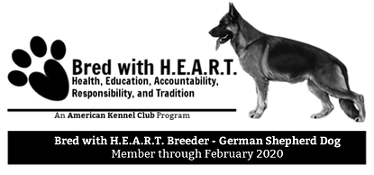 2018_GSD_BWH_banner (1).png