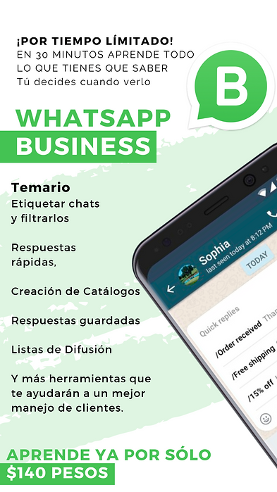 WHATSAPP BUSINESS (9).png