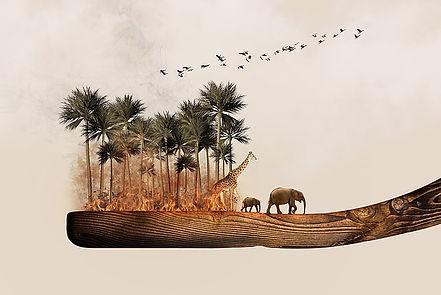 Bedrohte Artenvielfalt