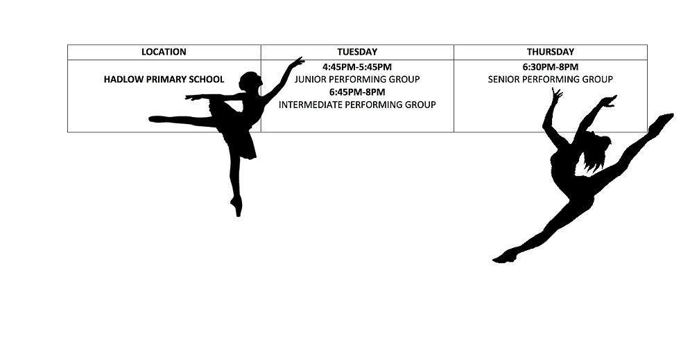 NEW performing group schedule.jpg