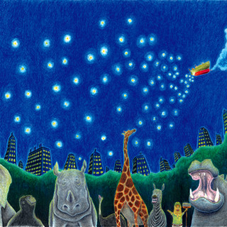 動物園の夜空