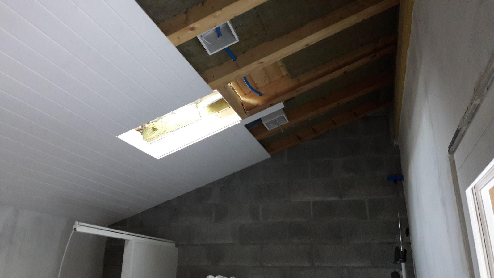 Recouvrement de lambri au plafond d'un g