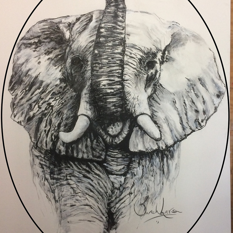 Prismatic Pachyderms & The Rainbow Elephant