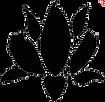black lotus only.png