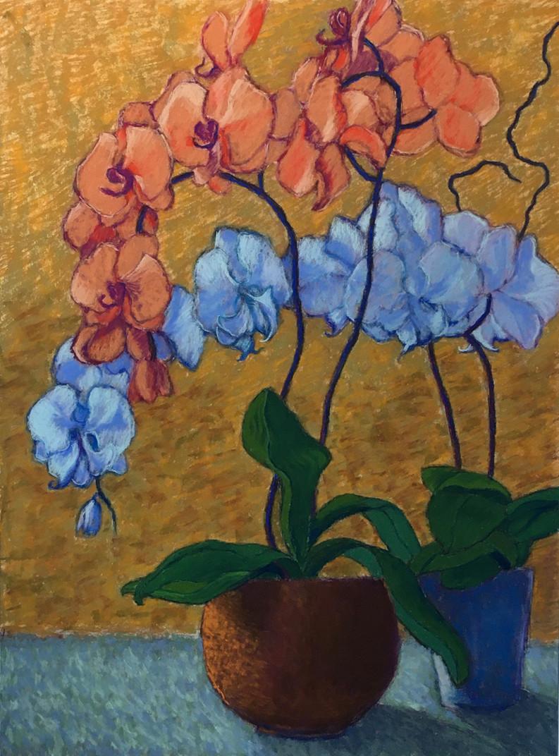 orchids24x18pastel.jpg