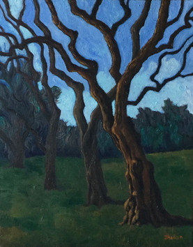 tree line franklin park 20x16 oil on can