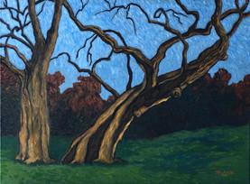 winter Franklin Park oil on canvas 18x24