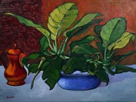 a peculiar plant 11x19 oil on canvas $30
