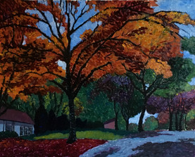 fall prairie village2.jpg