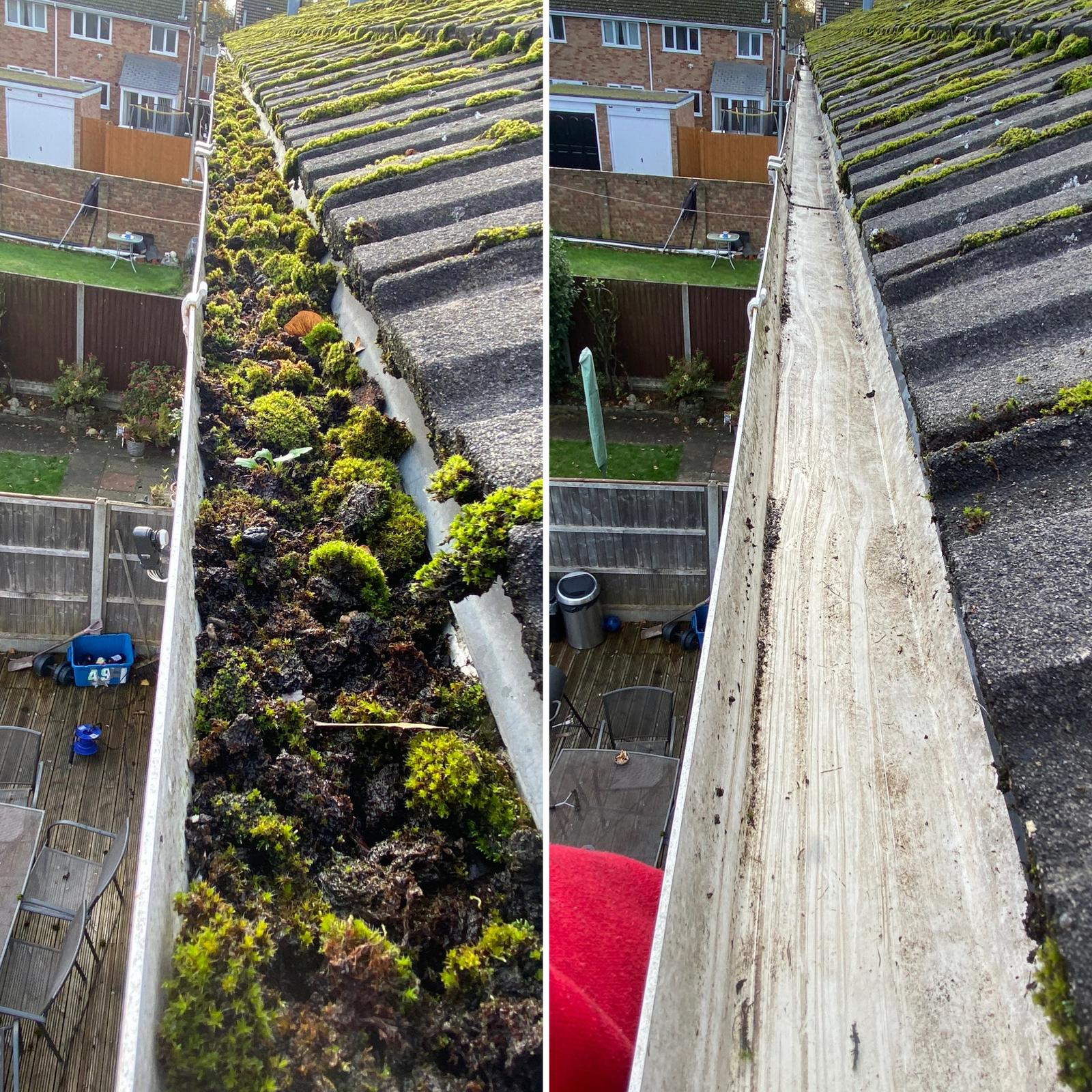Moss filled gutters