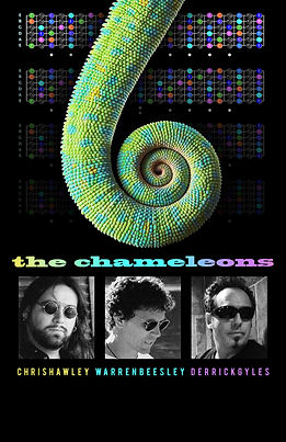 CHAMELEONS at Ride for Sight(1).jpg