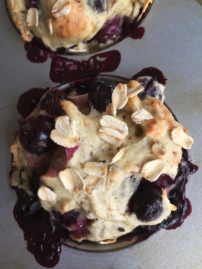 Breakfast Blueberry Oat Muffins
