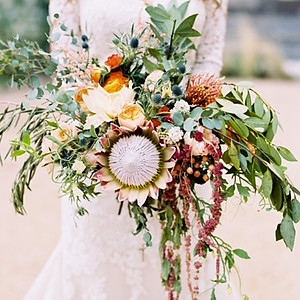Madison's Wedding