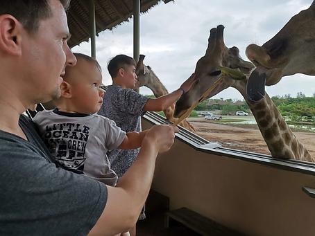 ประโยชน์ทั้ง 10 ของการพาลูกเที่ยวสวนสัตว์