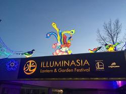 Lantern Festival 2015