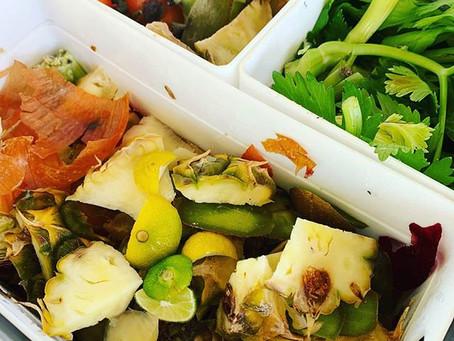 Söka Compost