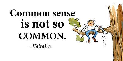 Voltaire-common sense.jpeg