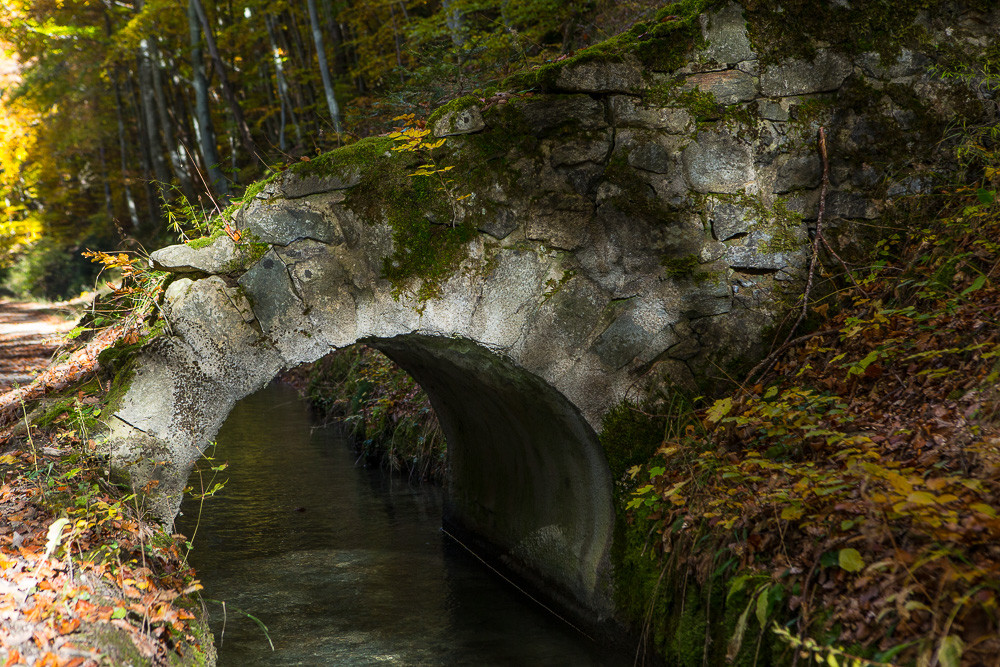 Pont et berge