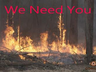 打工度假签 (462/417)--援助山火灾后重建可为同一雇主工作1年