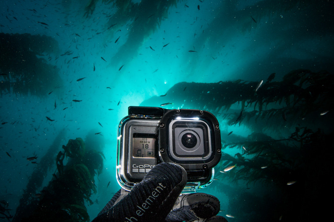 Underwater GoPro Video (an Introduction)