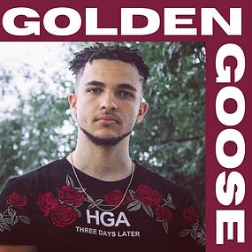 web GOLDEN GOOSE.png