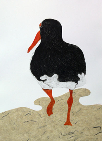 Oyster catcher 1-Hiary Peterson.jpg
