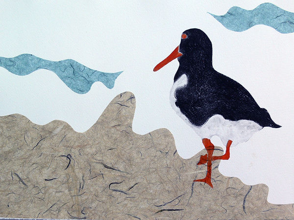 Oyster catcher 14-Hilary Peterson.jpg