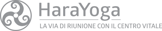 logo_HY_payoff.png