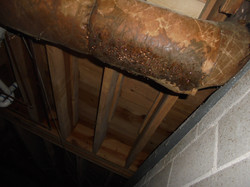 Vestavia Hills Crawlspace Inspection