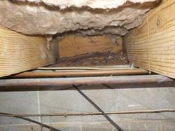 Rotten wood in crawlspace