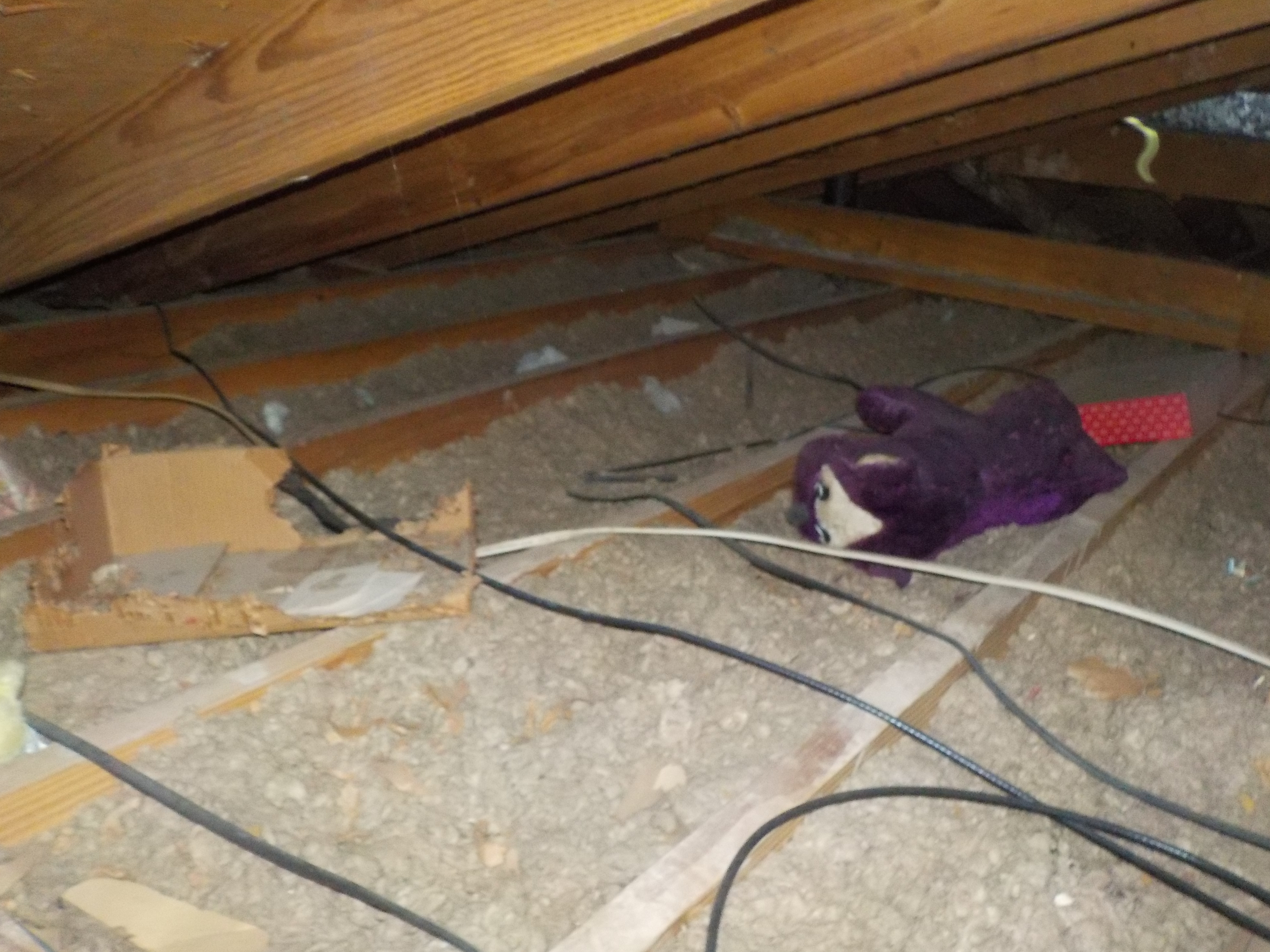 Alabaster attic inspection