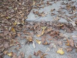 Alabaster Alabama sidewalk