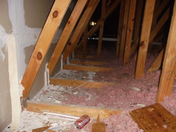 Hoover AL attic inspection