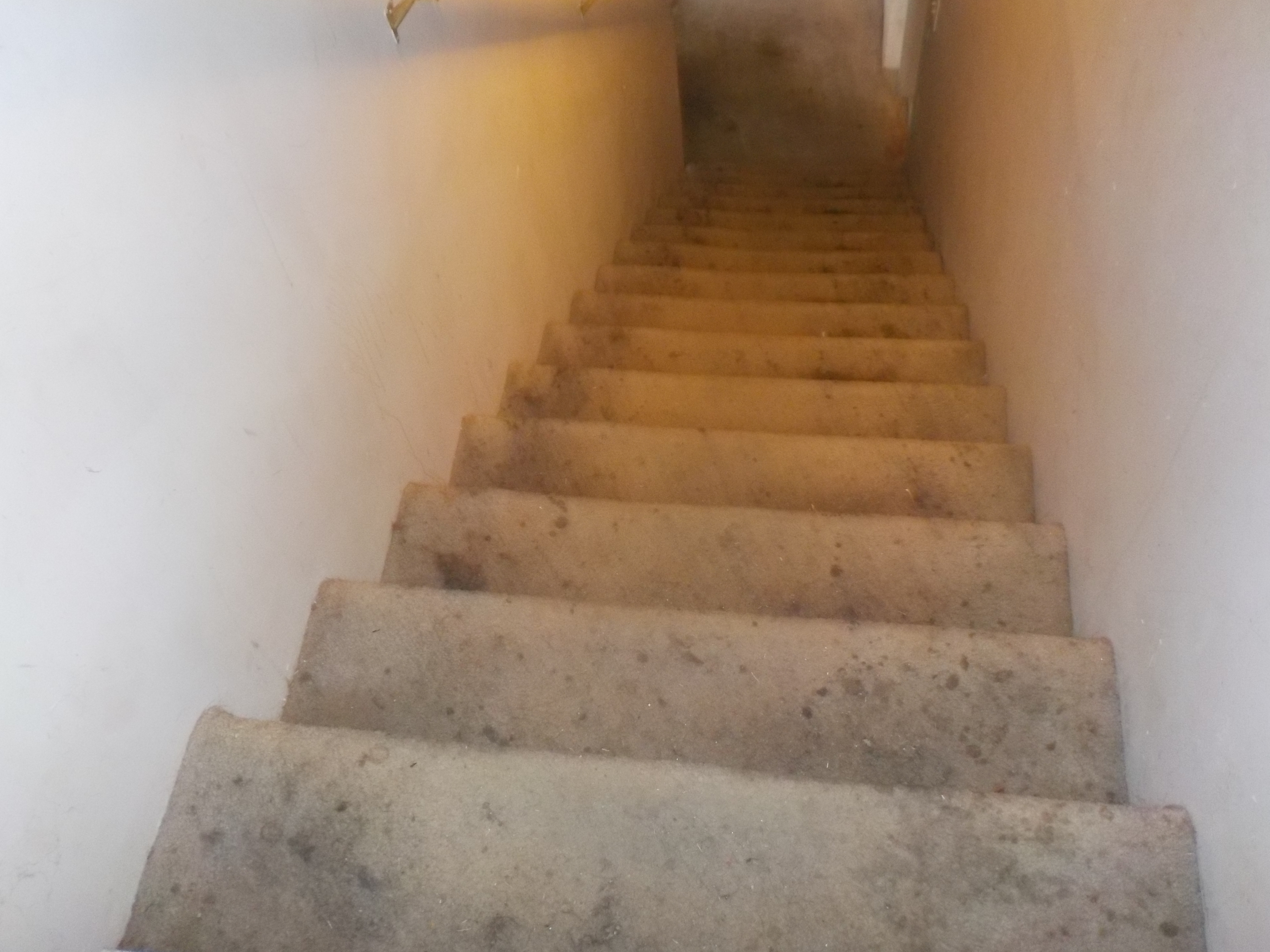 Pinson Stairwell needs rails
