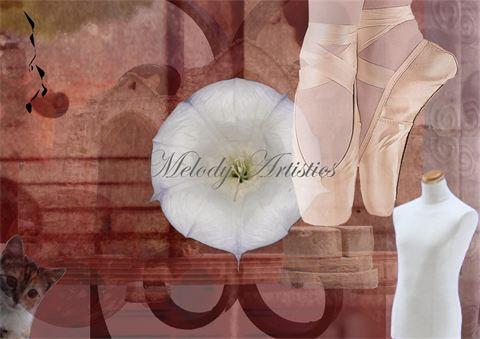 Ballet Fashion Cat.jpg