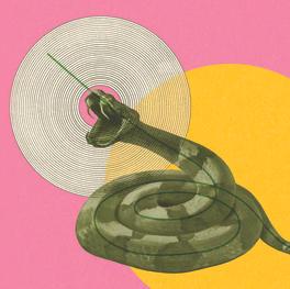 On Rattlesnakes