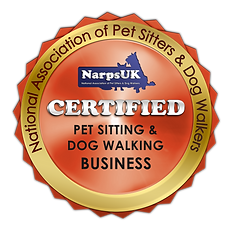 certified-business (1).png