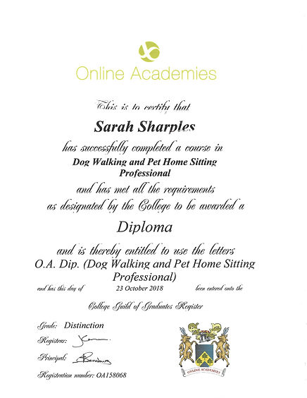Diploma in Dog Walking and Pet Home Sitt