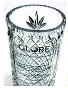 globe award.png