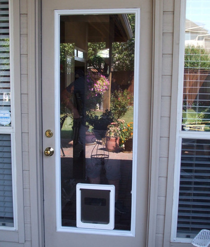 Dog Doors Door Glass 4 Pets United States