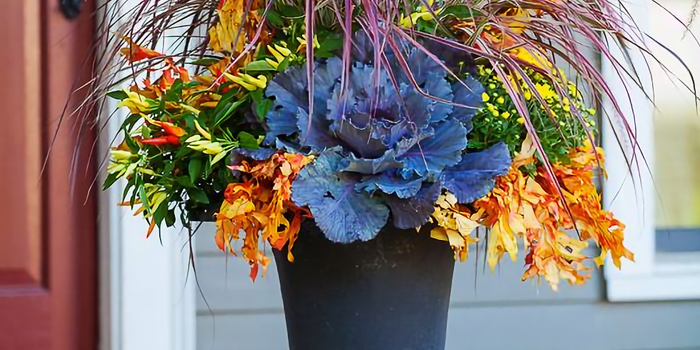 Designer Fall containers