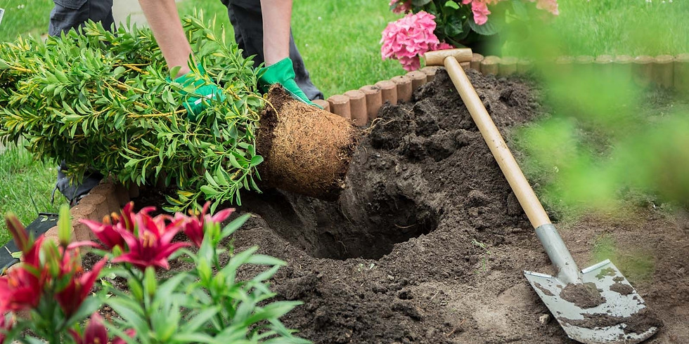Getting your Garden beds ready for Spring!