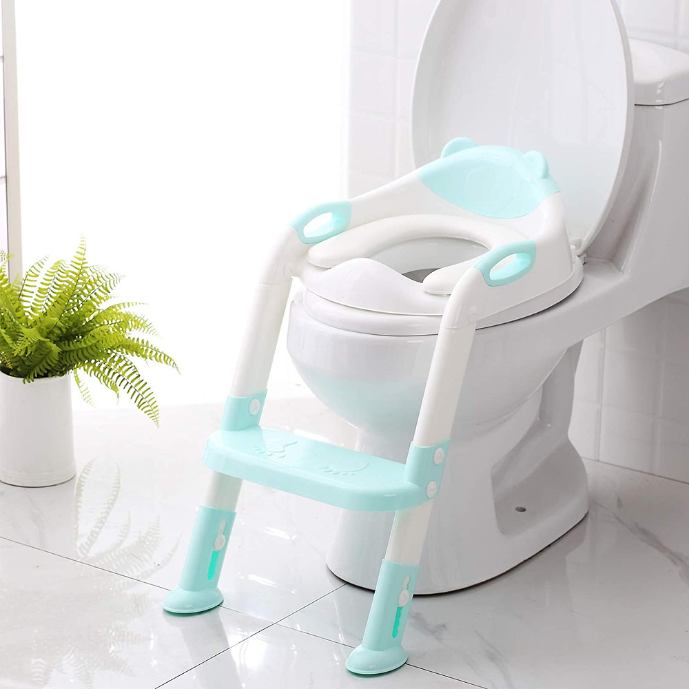Toilet with potty training seat with light blue ladder