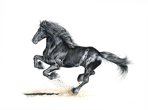Galloping Horse 'Freedom'