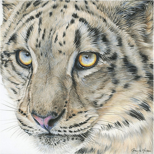 'Look Ahead' Limited Edition Giclee Print