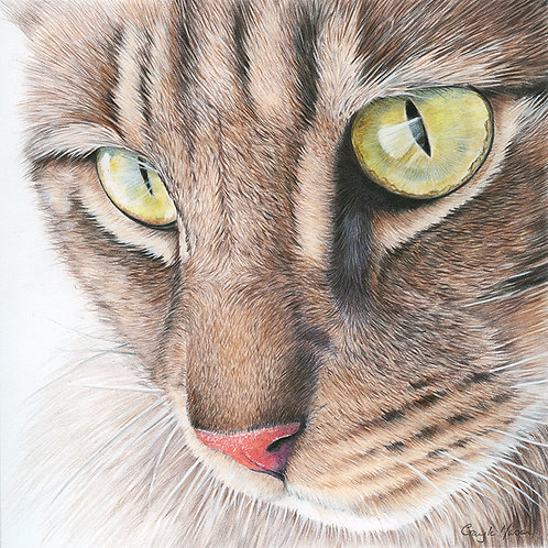 'Eyes Down' Limited Edition Giclee Print